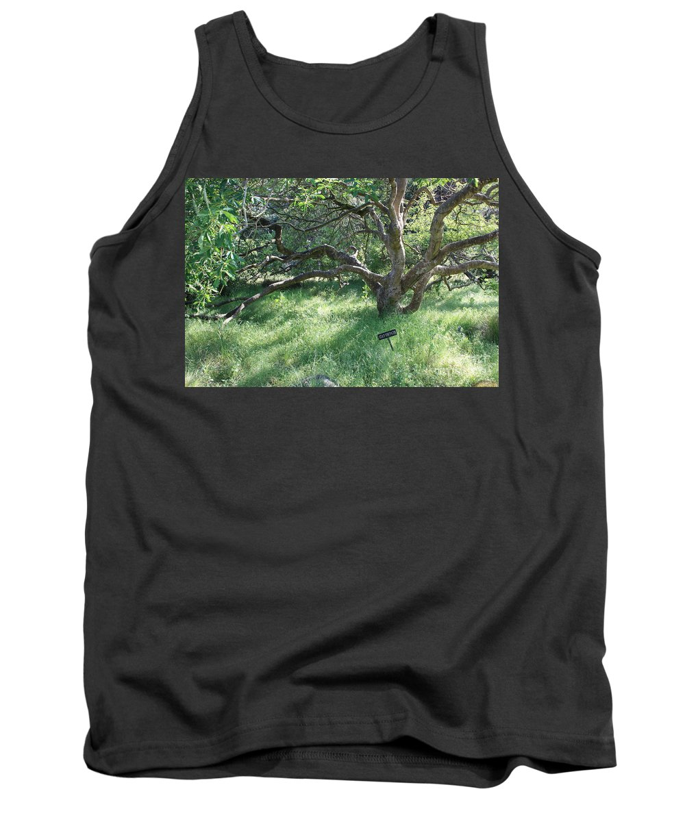 Tree Tank Top featuring the photograph Stay On Path by Carol Groenen