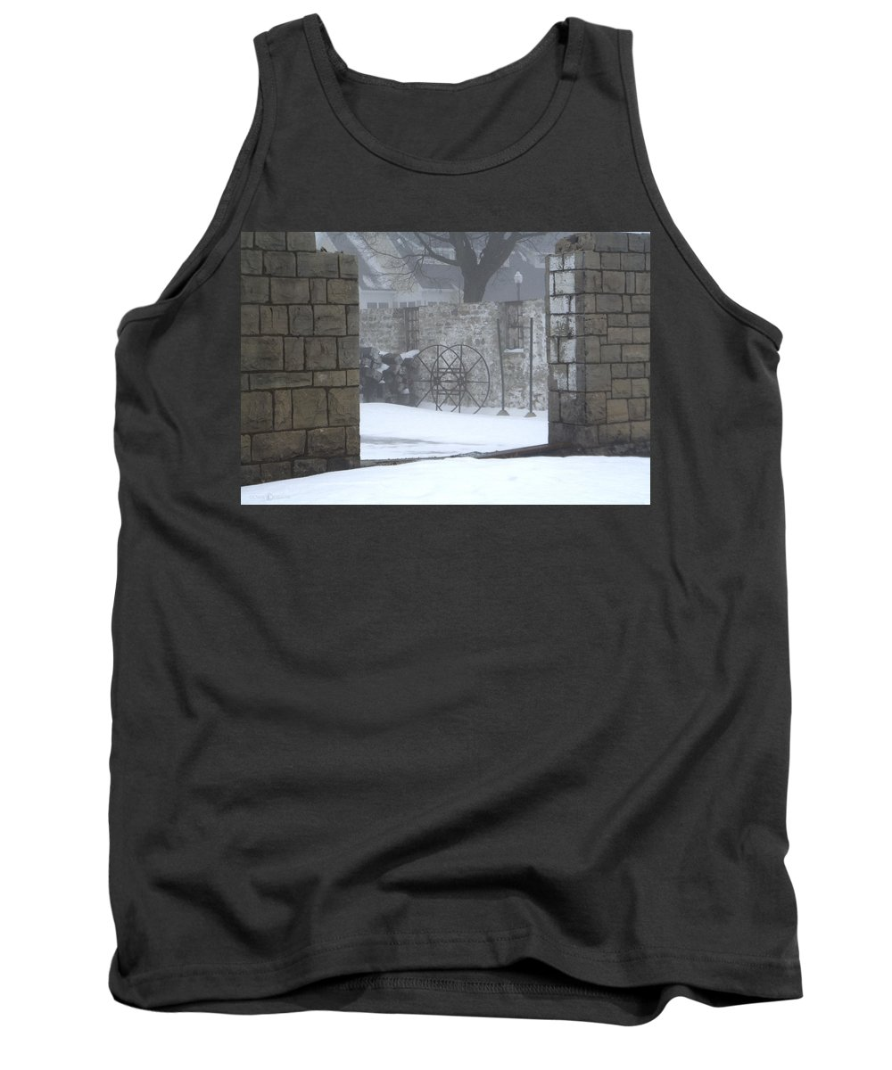 Winter Tank Top featuring the photograph Stone Cellar by Tim Nyberg