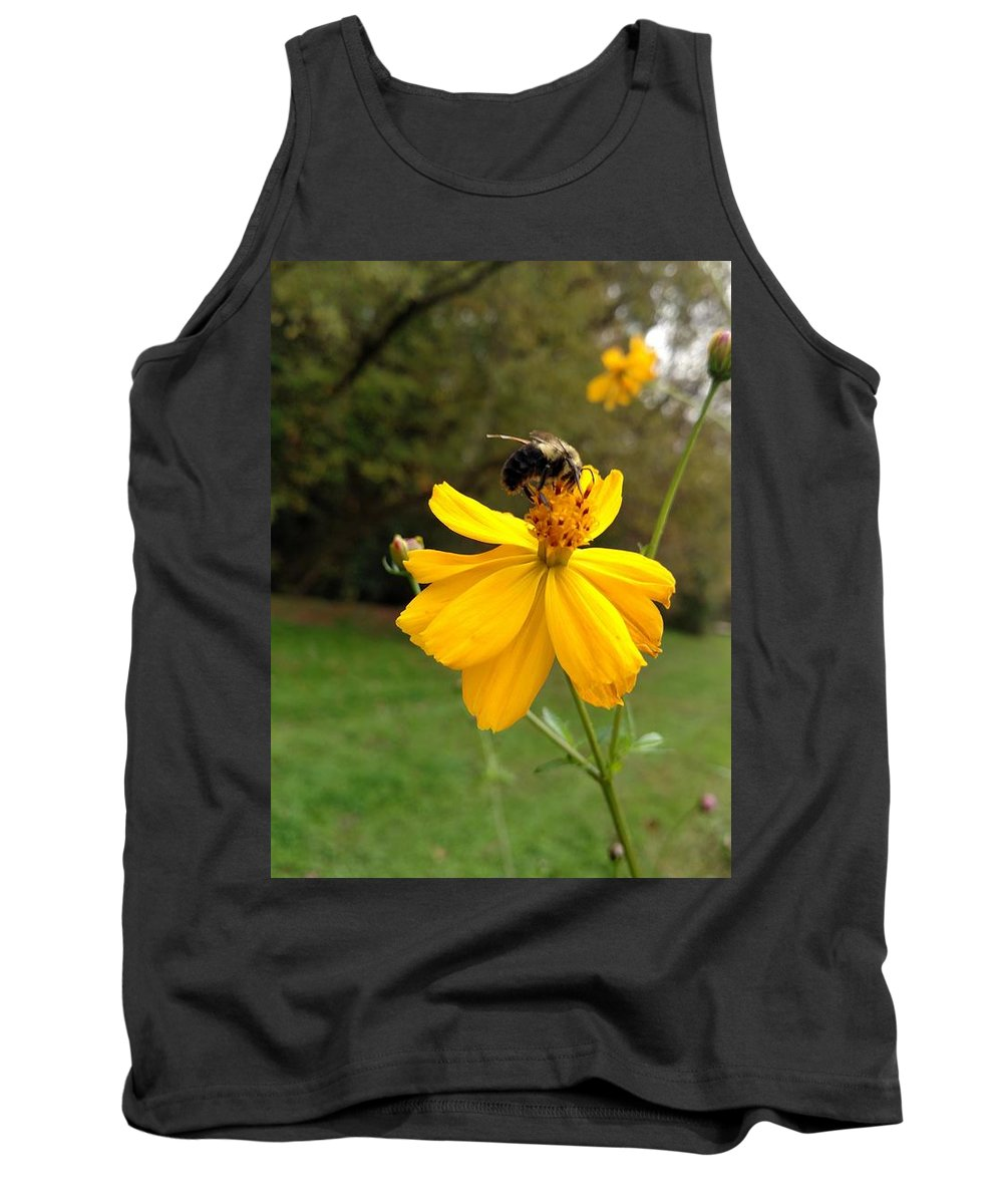Cosmos Tank Top featuring the photograph Stopping For A Sip by Amanda Myers