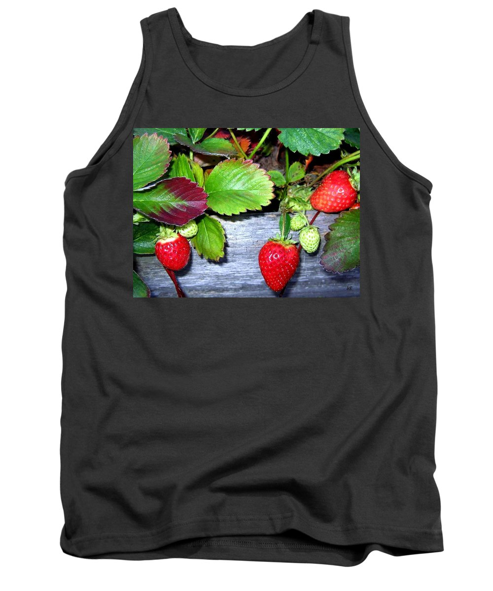 Strawberries Tank Top featuring the photograph Strawberries by Will Borden