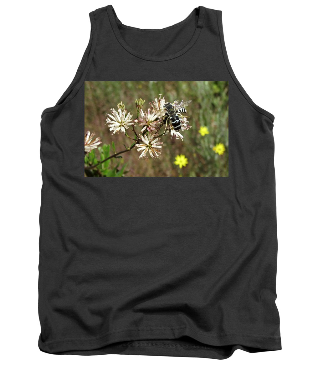 Nature Tank Top featuring the photograph Striped Bee by Peg urban
