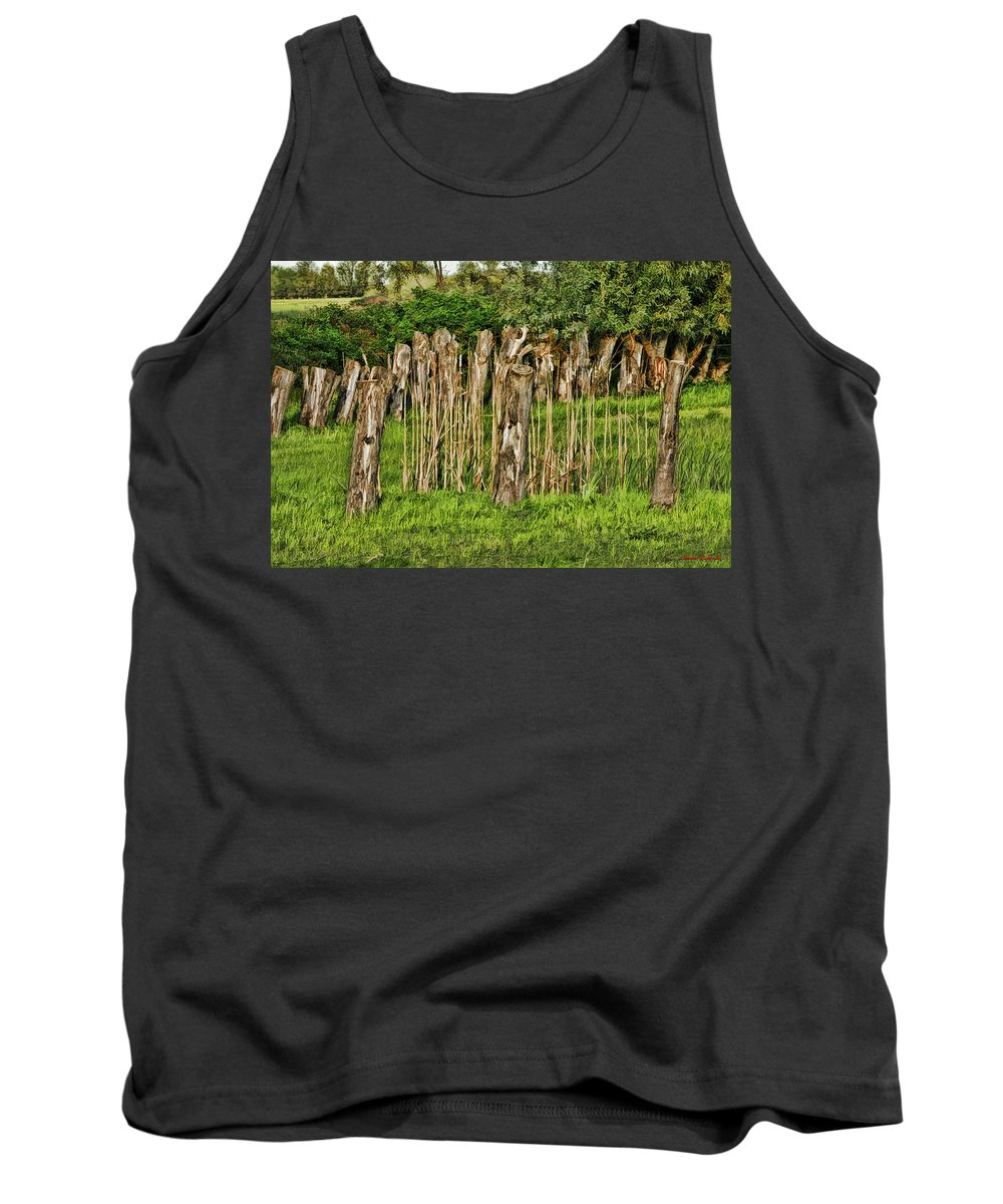 Tank Top featuring the photograph Stumps by Blake Richards