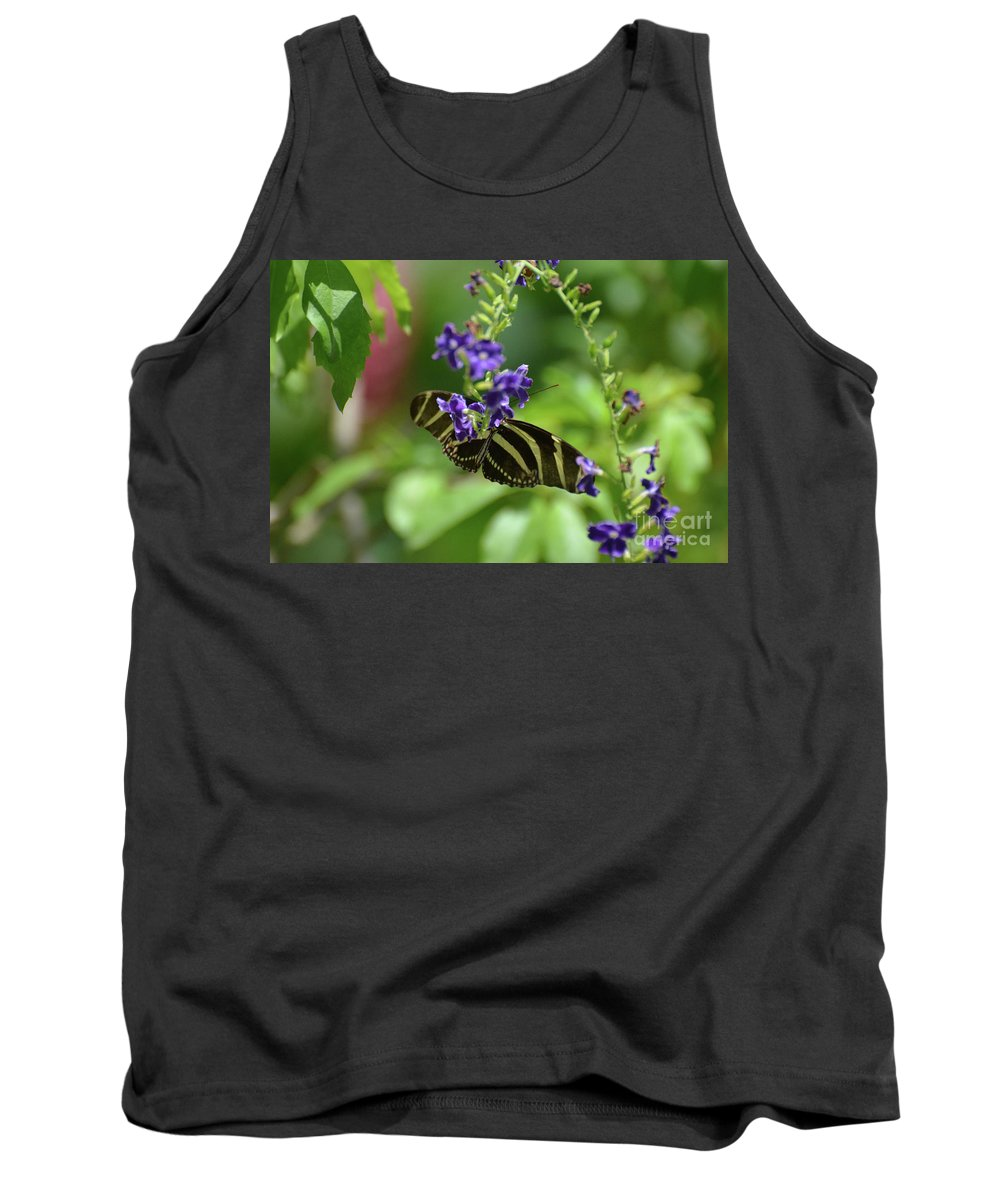 Zebra-butterfly Tank Top featuring the photograph Stunning Black And White Zebra Butterfly In The Spring by DejaVu Designs