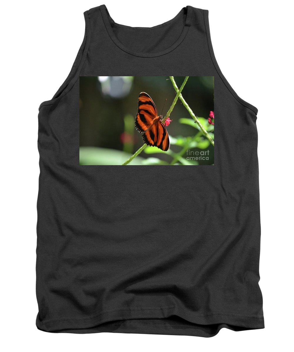 Butterfly Tank Top featuring the photograph Stunning Oak Tiger Butterfly Resting On Flowers by DejaVu Designs