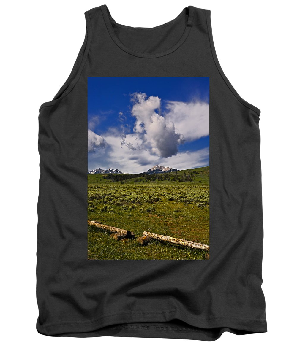 Nature Tank Top featuring the photograph Summer by John K Sampson