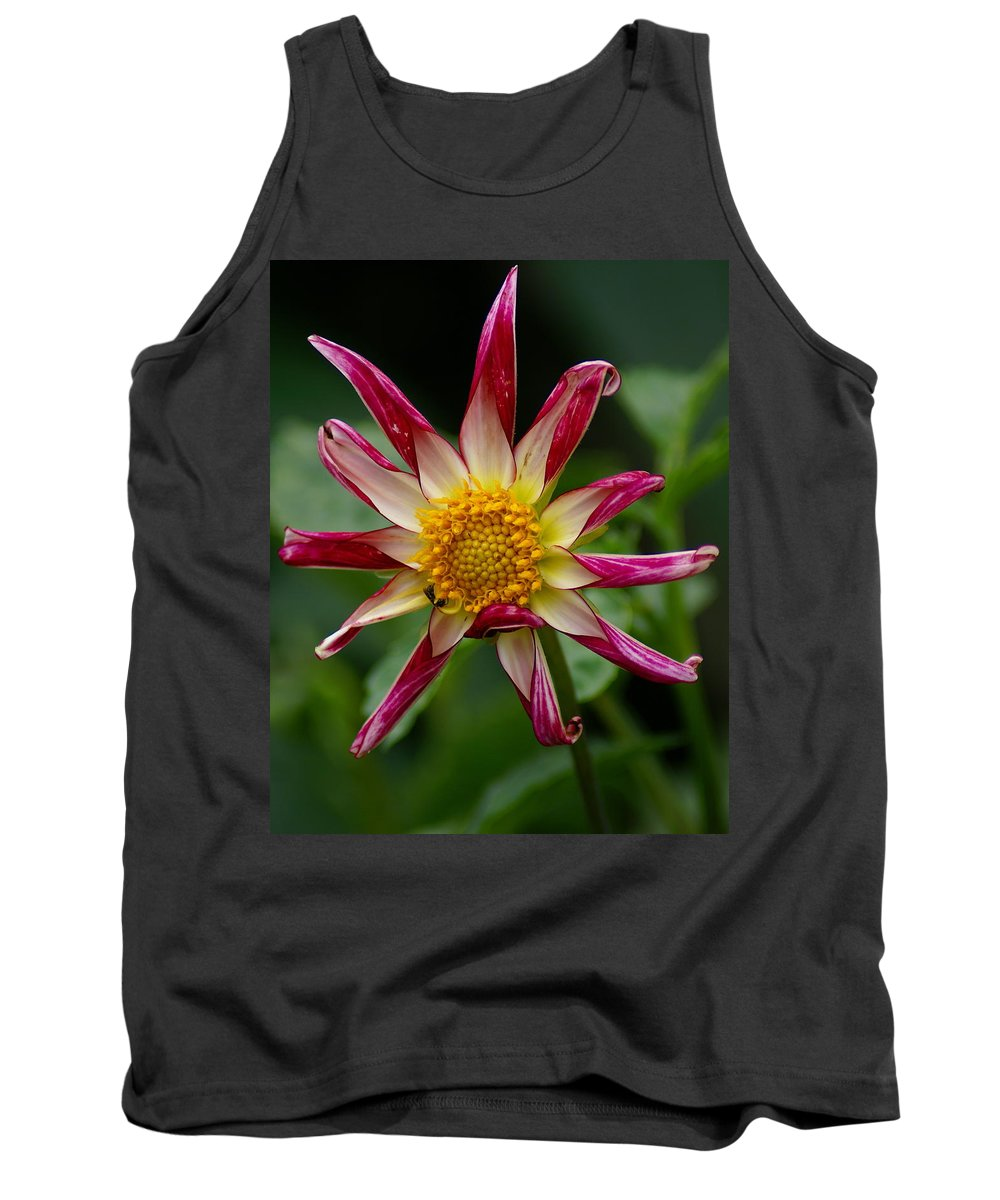 Nature Tank Top featuring the photograph Sunburst Peppermint by Ben Upham III