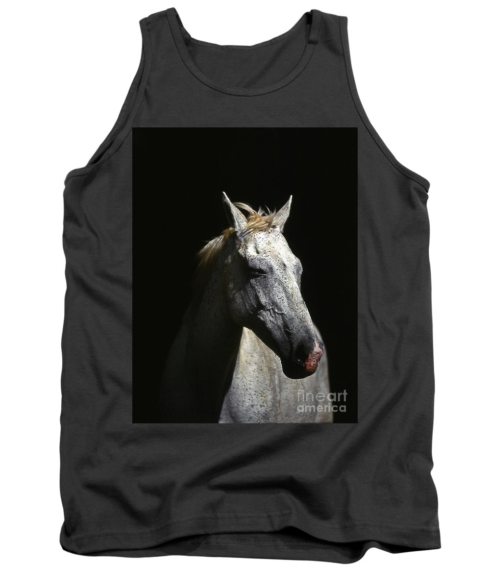 Horse Tank Top featuring the photograph Sundance by Jim Cazel