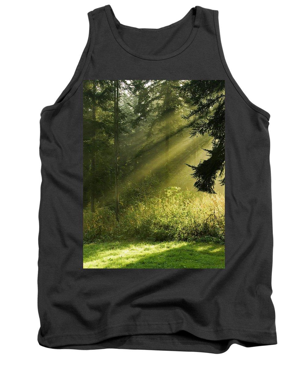 Nature Tank Top featuring the photograph Sunlight by Daniel Csoka