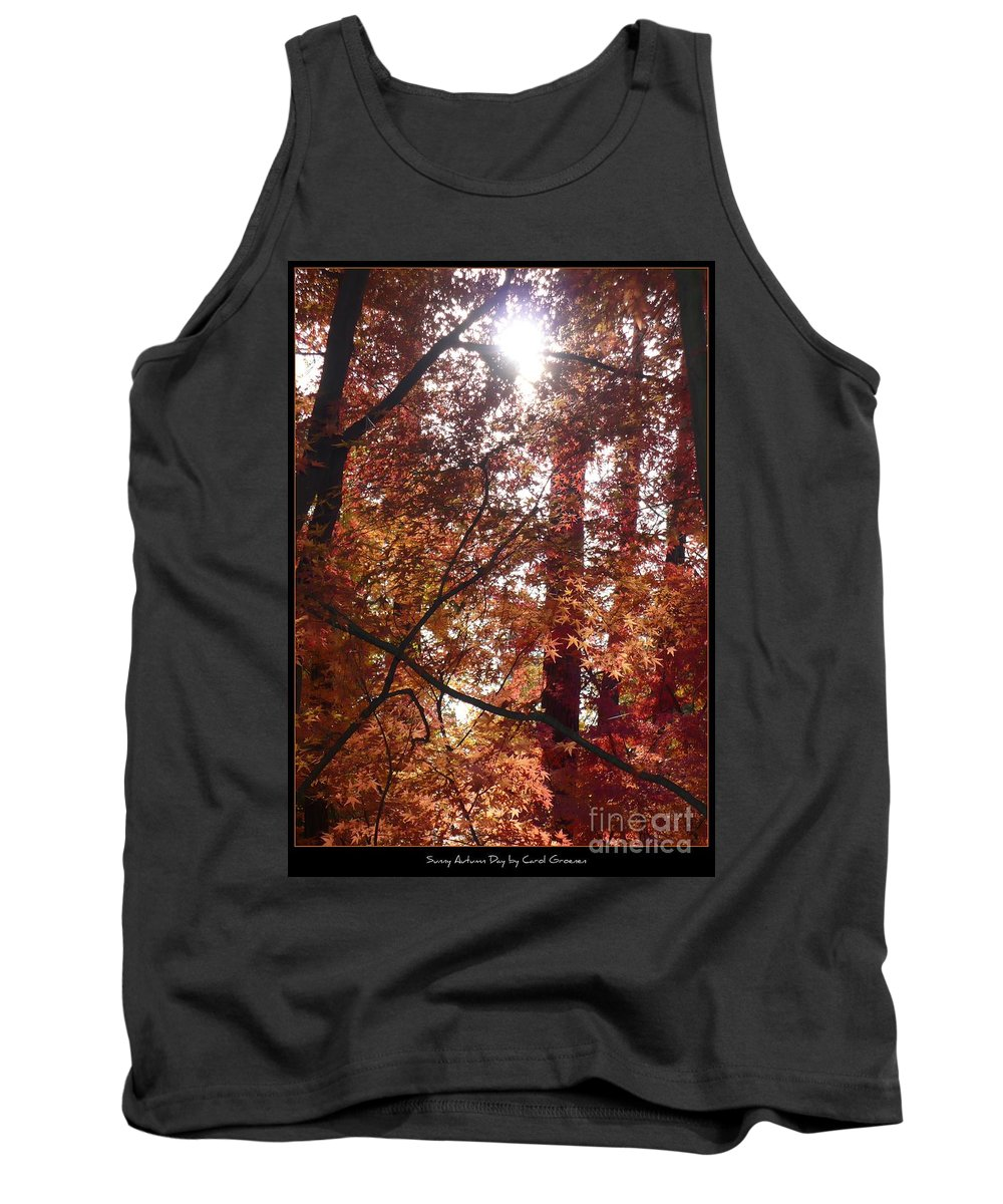 Fall Tank Top featuring the photograph Sunny Autumn Day Poster by Carol Groenen