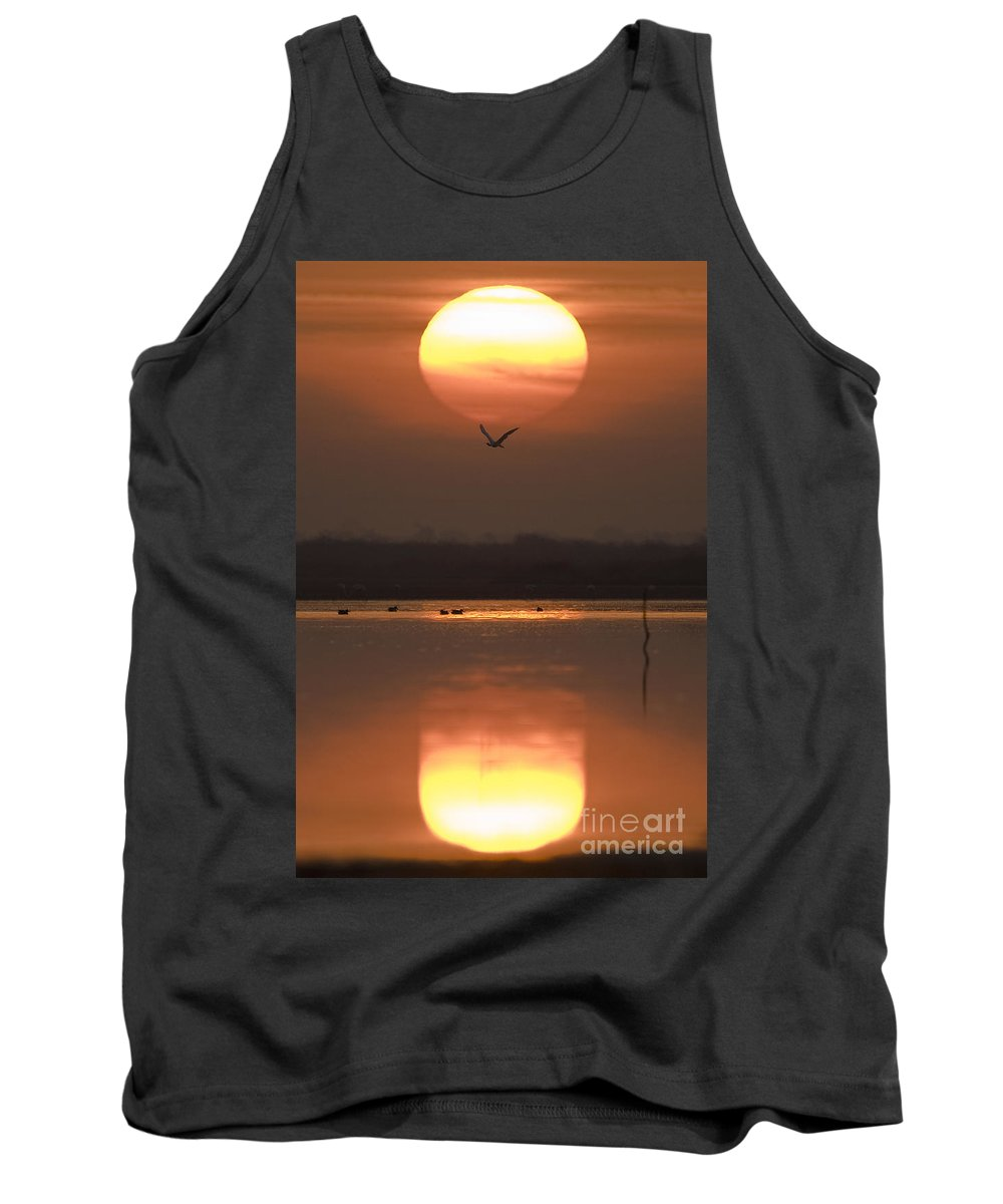 Lake Tank Top featuring the photograph Sunrise Reflection by Hitendra SINKAR