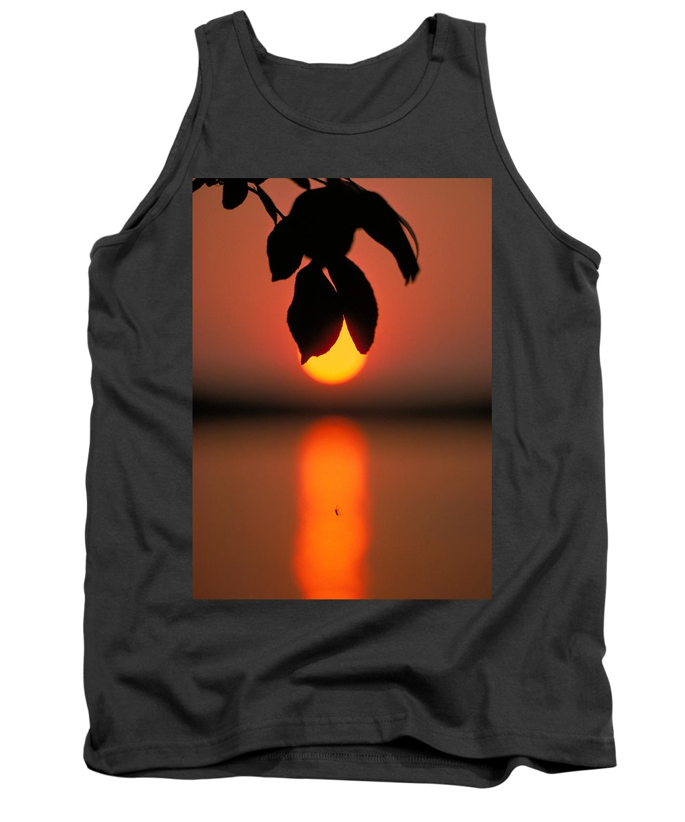 Sunset Tank Top featuring the photograph Sunset And Spider by Thomas Firak