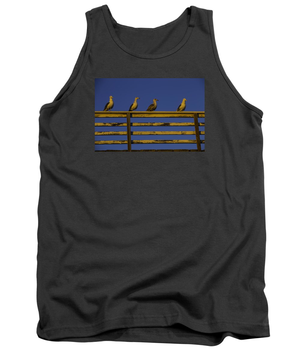 Sunset Tank Top featuring the photograph Sunset Seagulls by Garry Gay