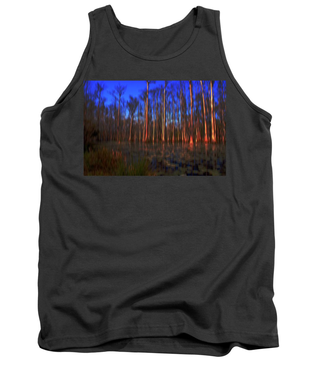 Swamp Tank Top featuring the photograph Swamp In Cypress Gardens by Susanne Van Hulst