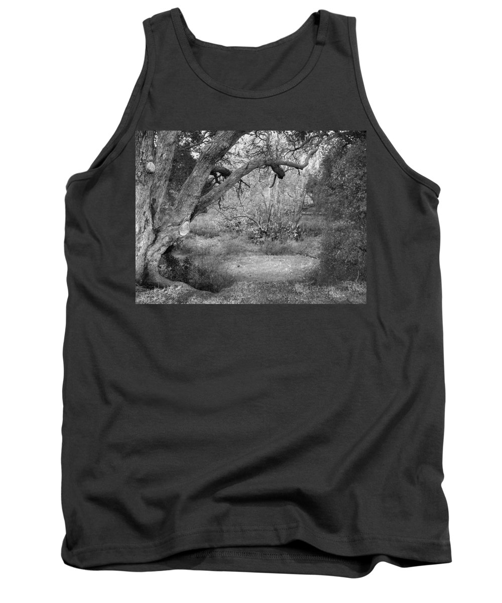 Landscape Tank Top featuring the photograph Sycamore Grove Black And White by Karen W Meyer