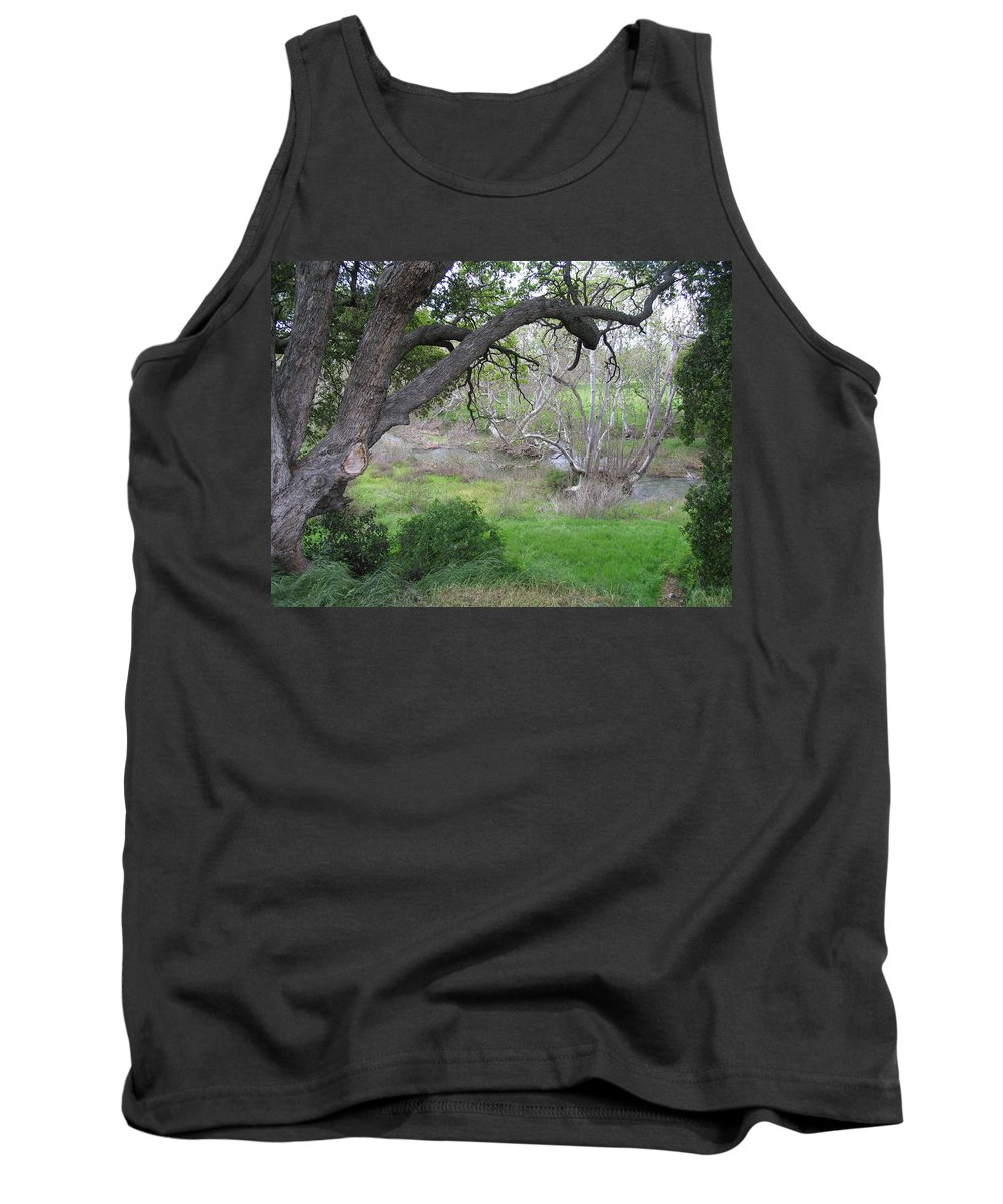 Landscape Tank Top featuring the photograph Sycamore Grove by Karen W Meyer