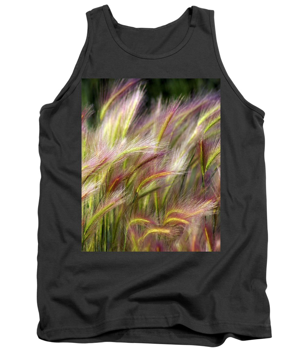 Plants Tank Top featuring the photograph Tall Grass by Marty Koch