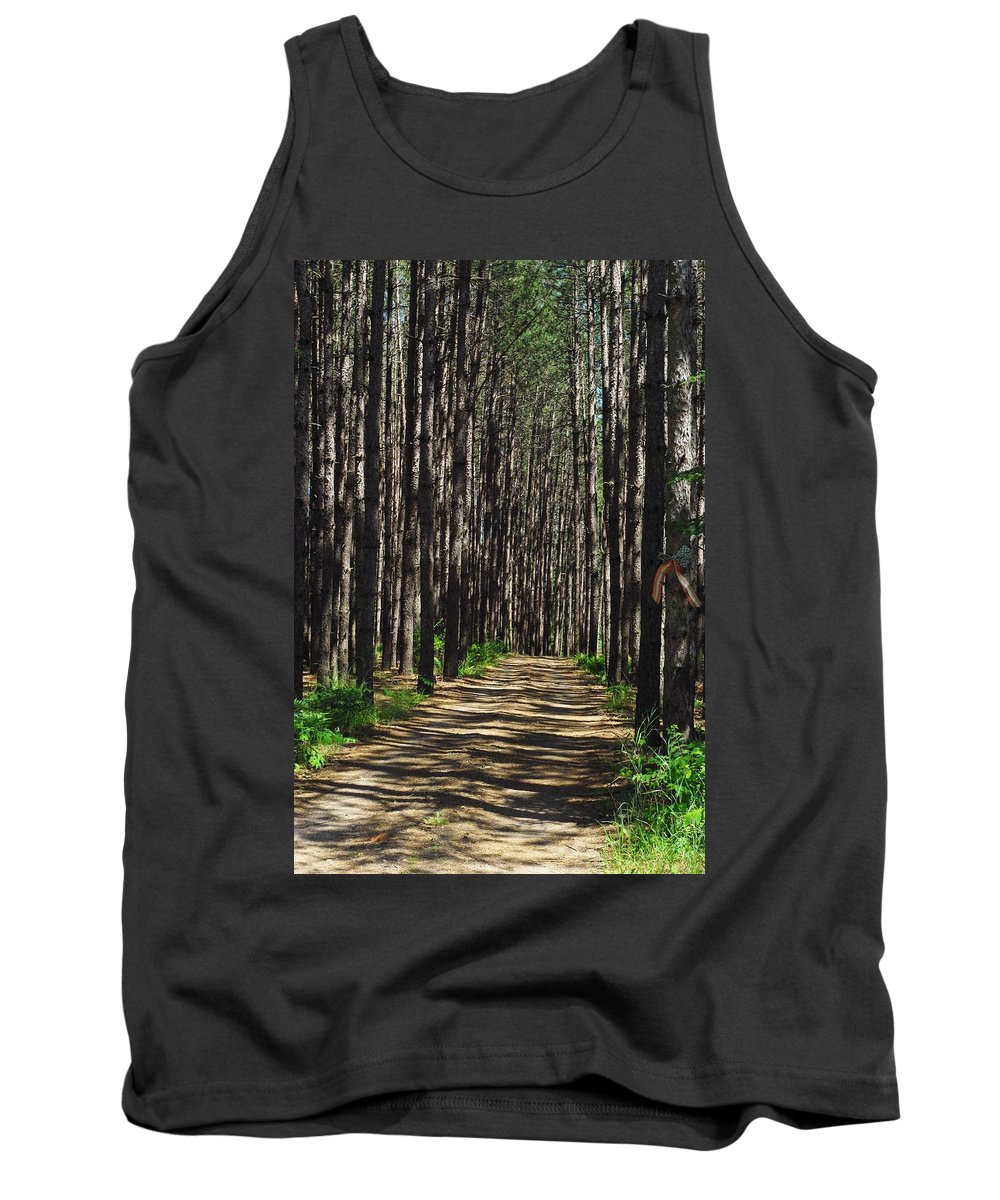 Trees Tank Top featuring the photograph Tall Pine Lined Path by Alice Markham