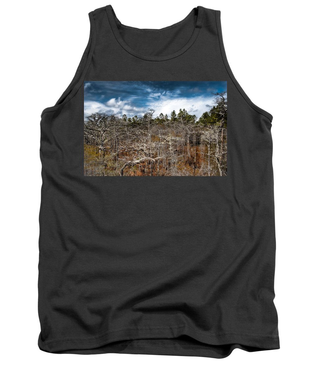 Landscapre Tank Top featuring the photograph Tate's Hell State Forest by Rich Leighton