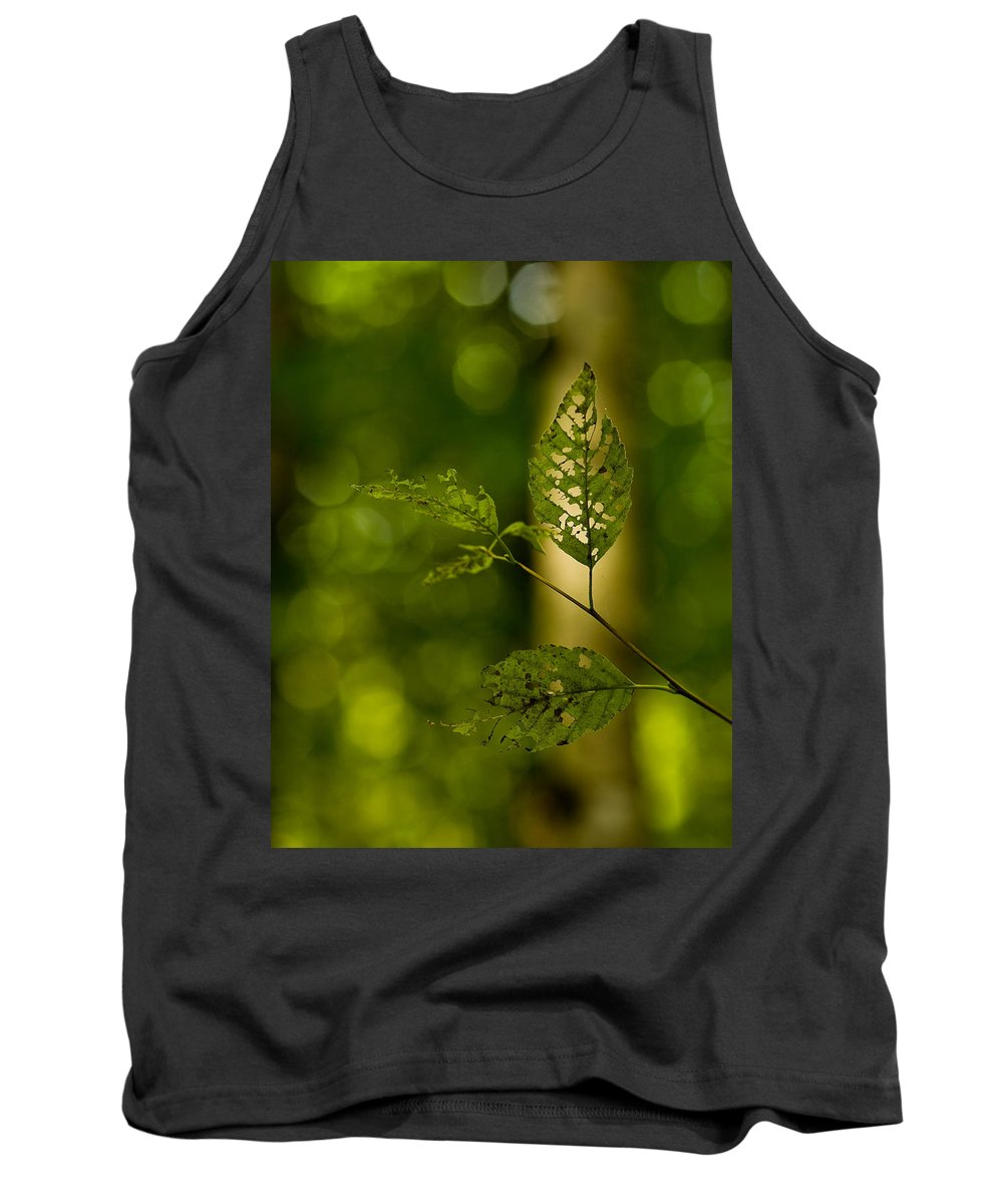 Leaf Tank Top featuring the photograph Tattered Leaves by Mike Reid