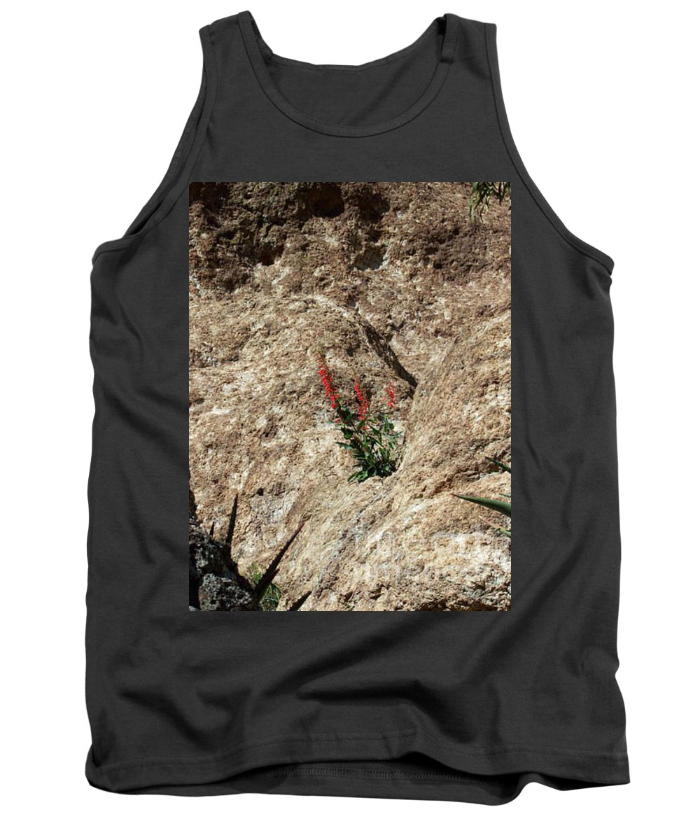 Wildflowers; Flowers Tank Top featuring the photograph Tenacity by Kathy McClure