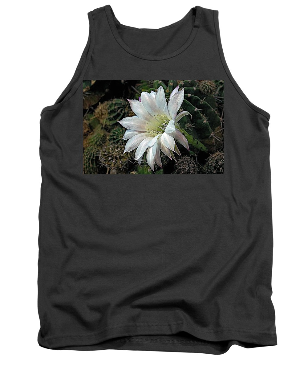 White Tank Top featuring the photograph The Beauty Of Cactus by Hazel Vaughn
