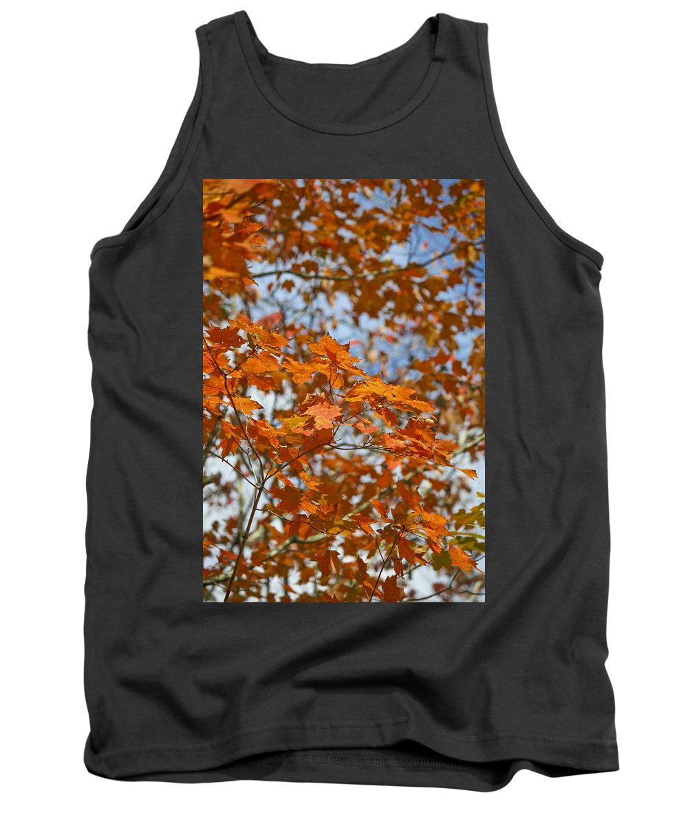 Fall Tank Top featuring the photograph The Color Of Fall 1 by Teresa Mucha