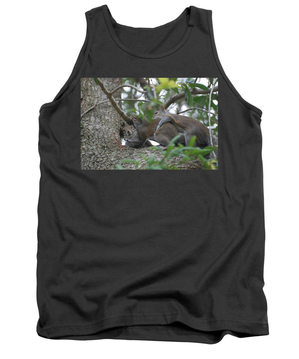 Squirrels Tank Top featuring the photograph The Fight For Life by Rob Hans