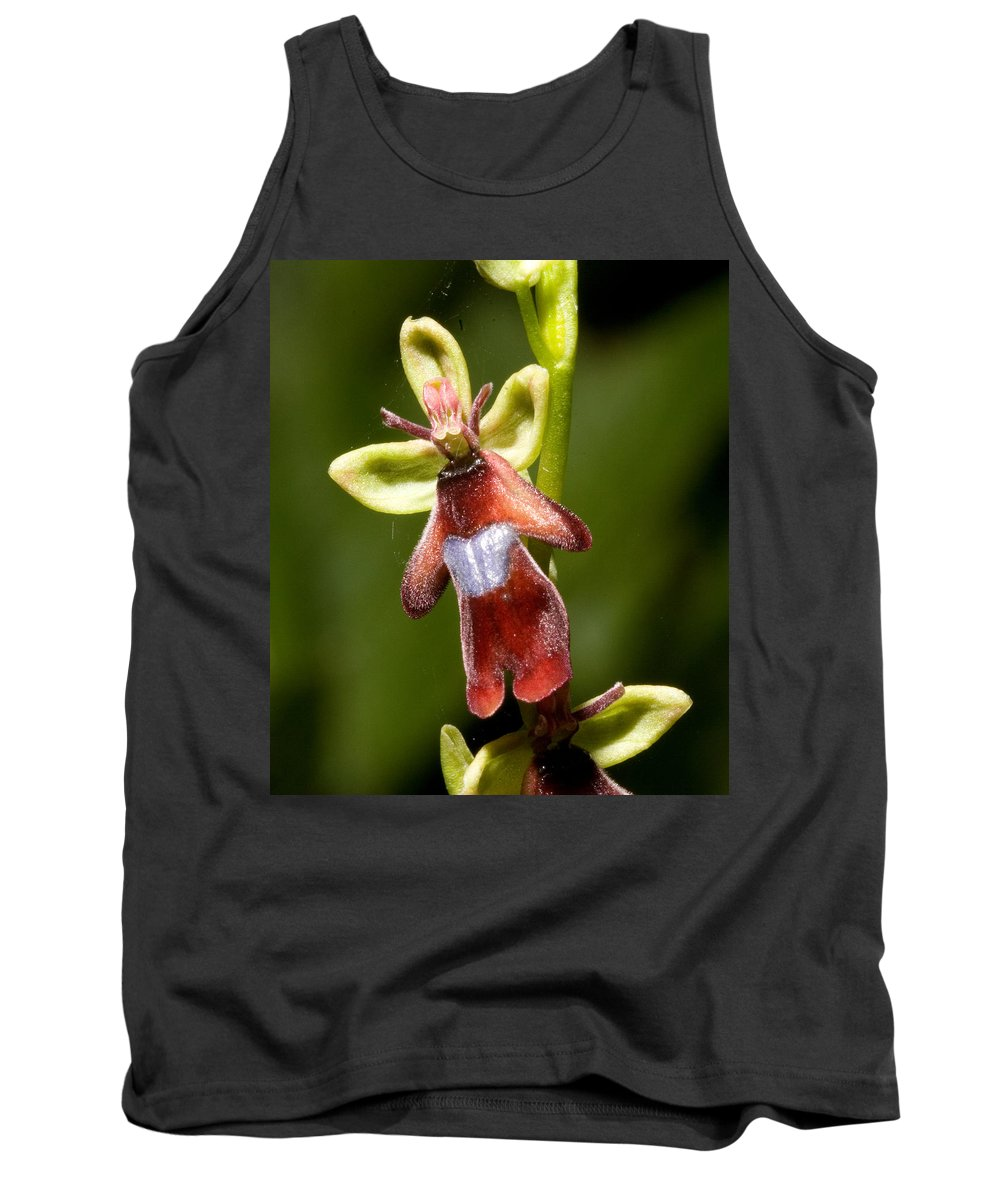 Fly Tank Top featuring the photograph The Fly Orchid by Bob Kemp