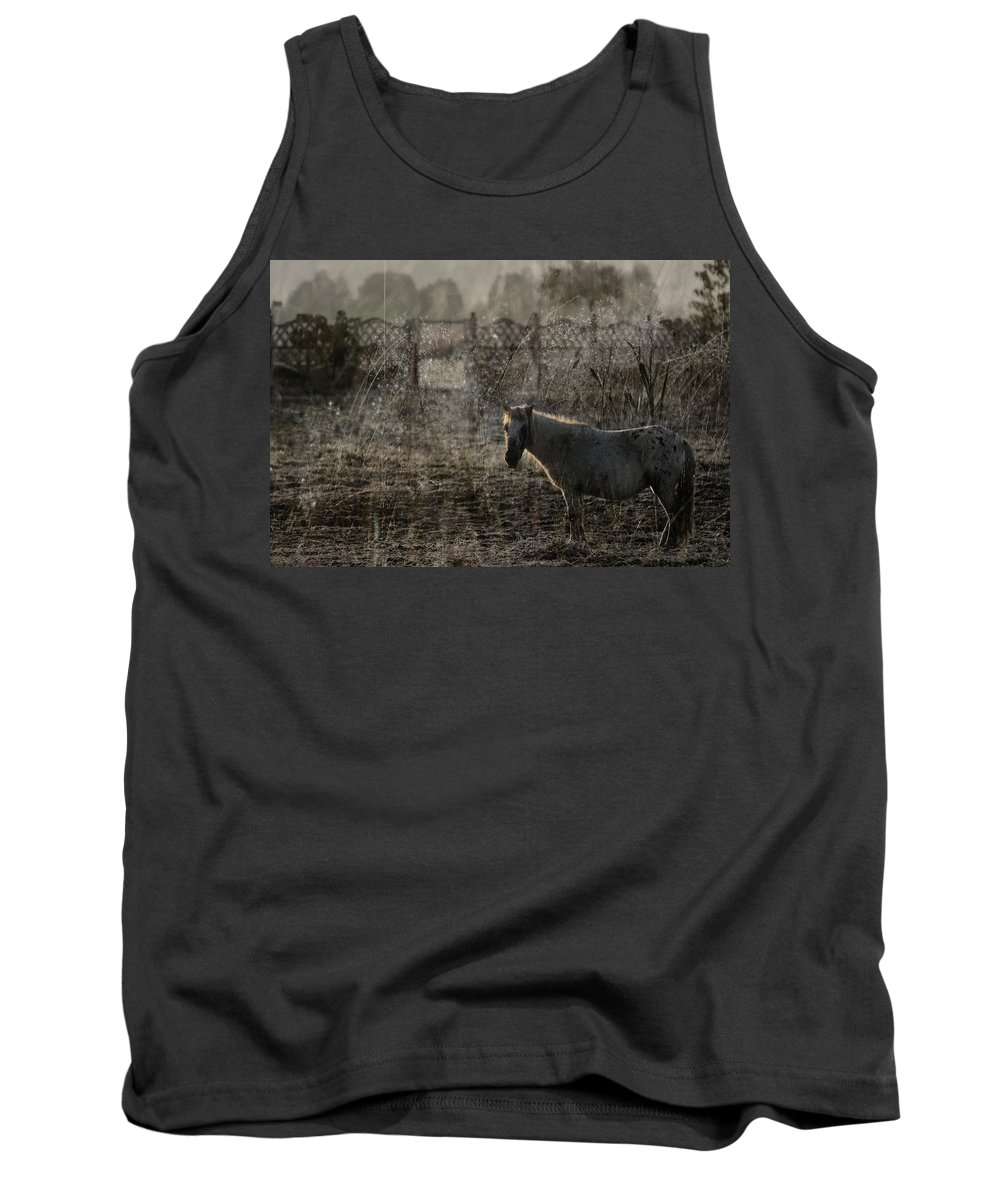Pferd Tank Top featuring the photograph The Frosty Morning by Angel Tarantella