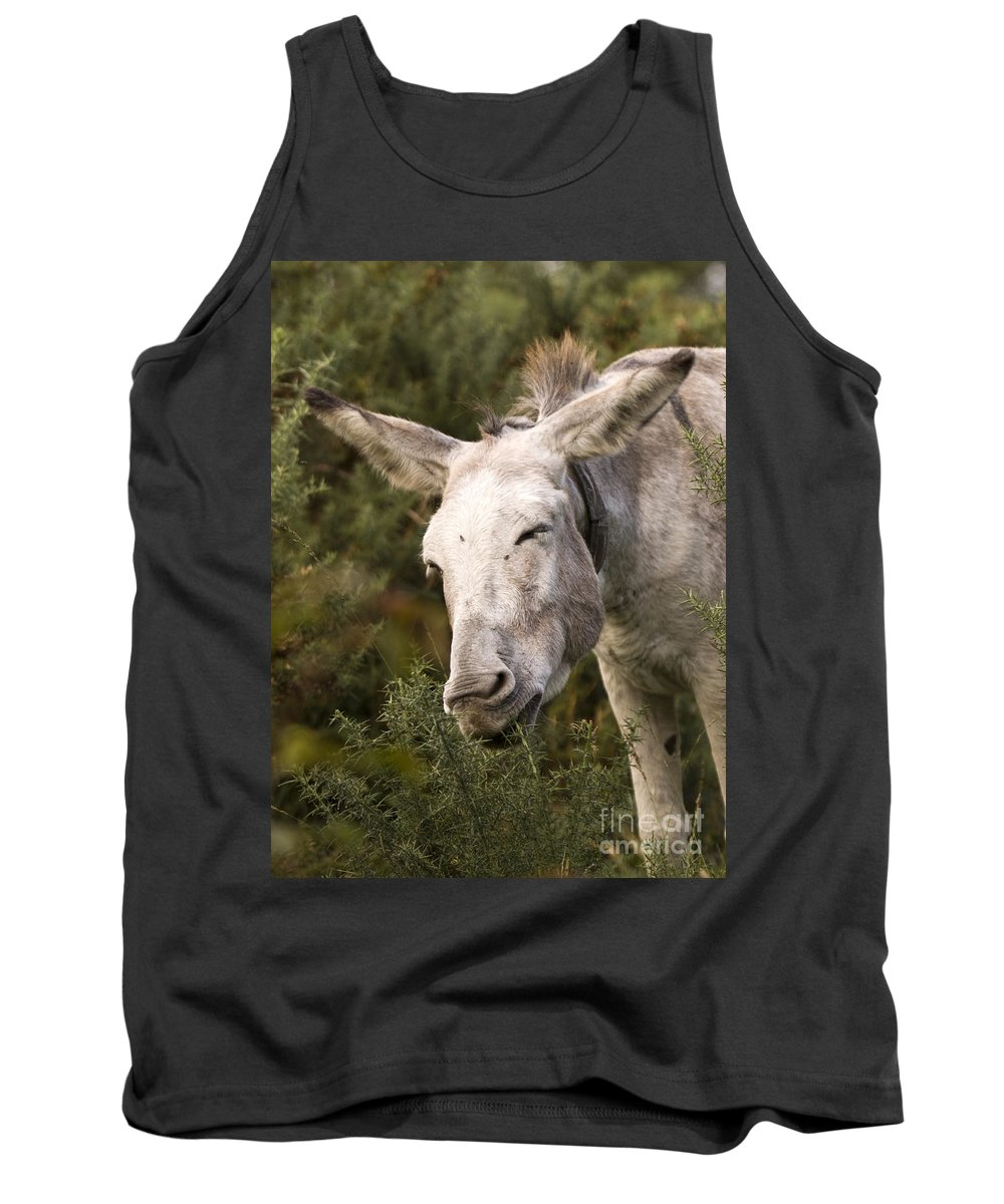 Donkey Tank Top featuring the photograph the Funny Donkey by Angel Ciesniarska