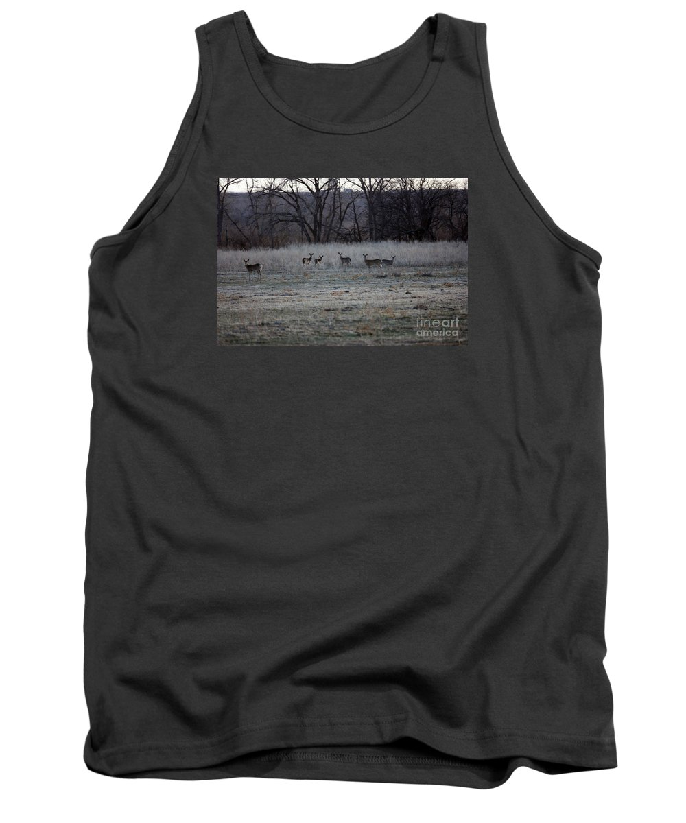 Deer Tank Top featuring the photograph The Gang's All Here by Robert Smitherman