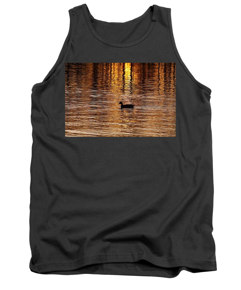 Water Tank Top featuring the photograph The Golden Hour by Robert Pearson