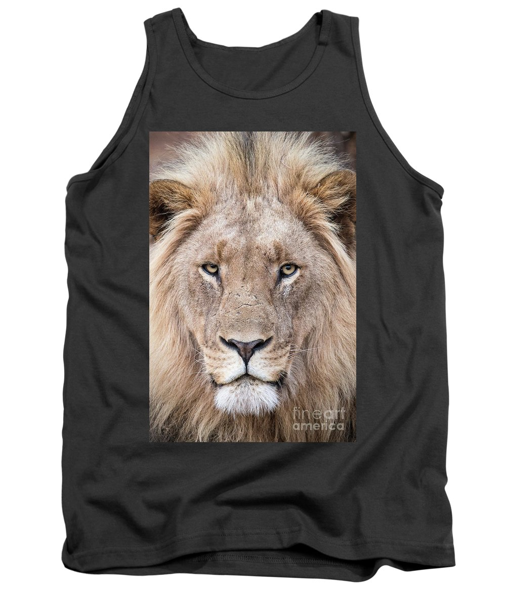 Lion Tank Top featuring the photograph The King by Tom Broadhurst