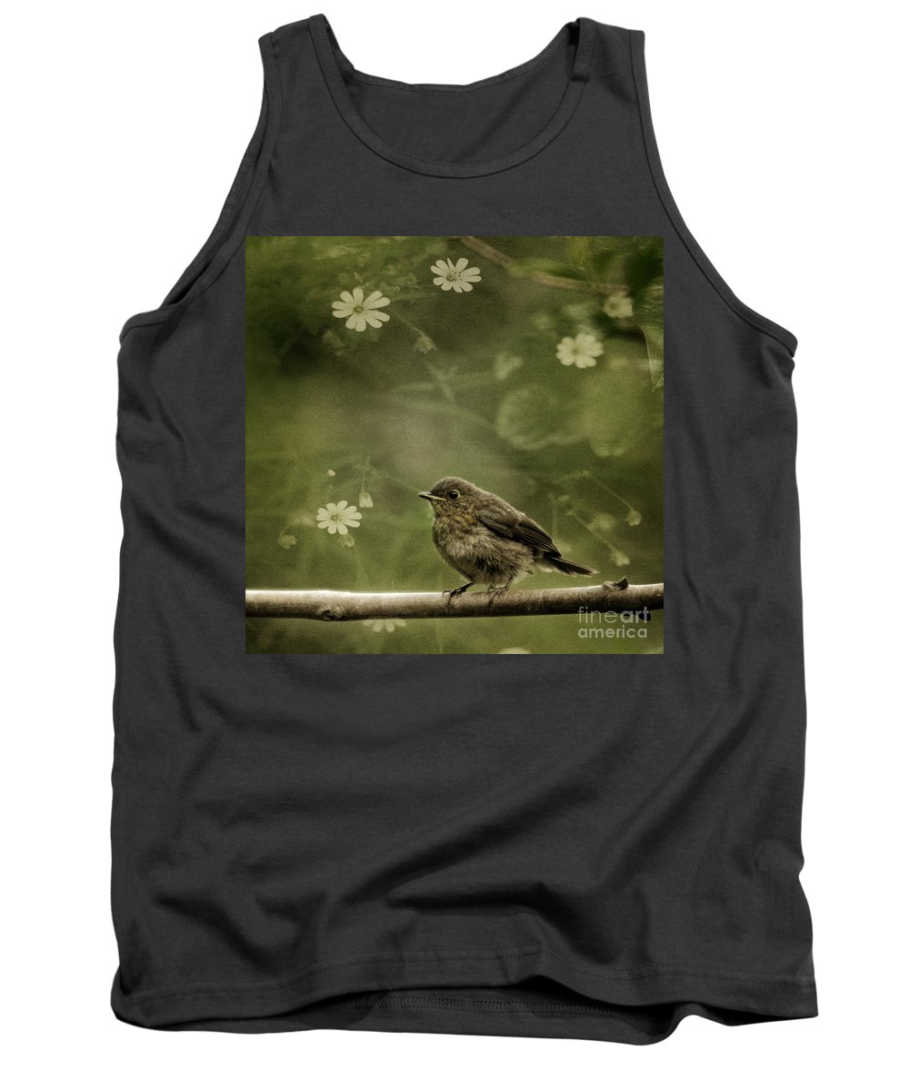Robin Tank Top featuring the photograph The Little Robin by Angel Ciesniarska