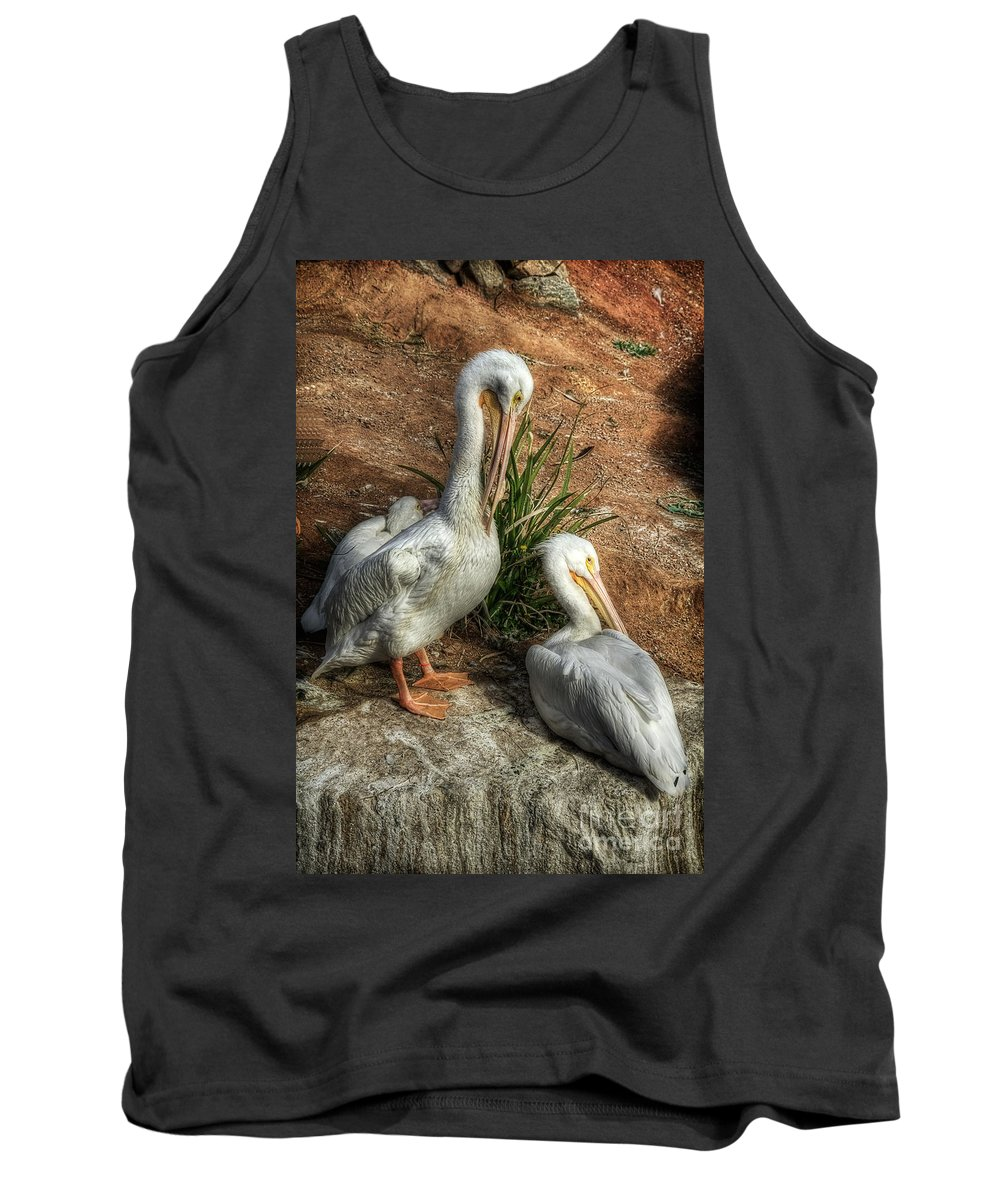 White Pelicans Tank Top featuring the photograph The Pelicans by Saija Lehtonen
