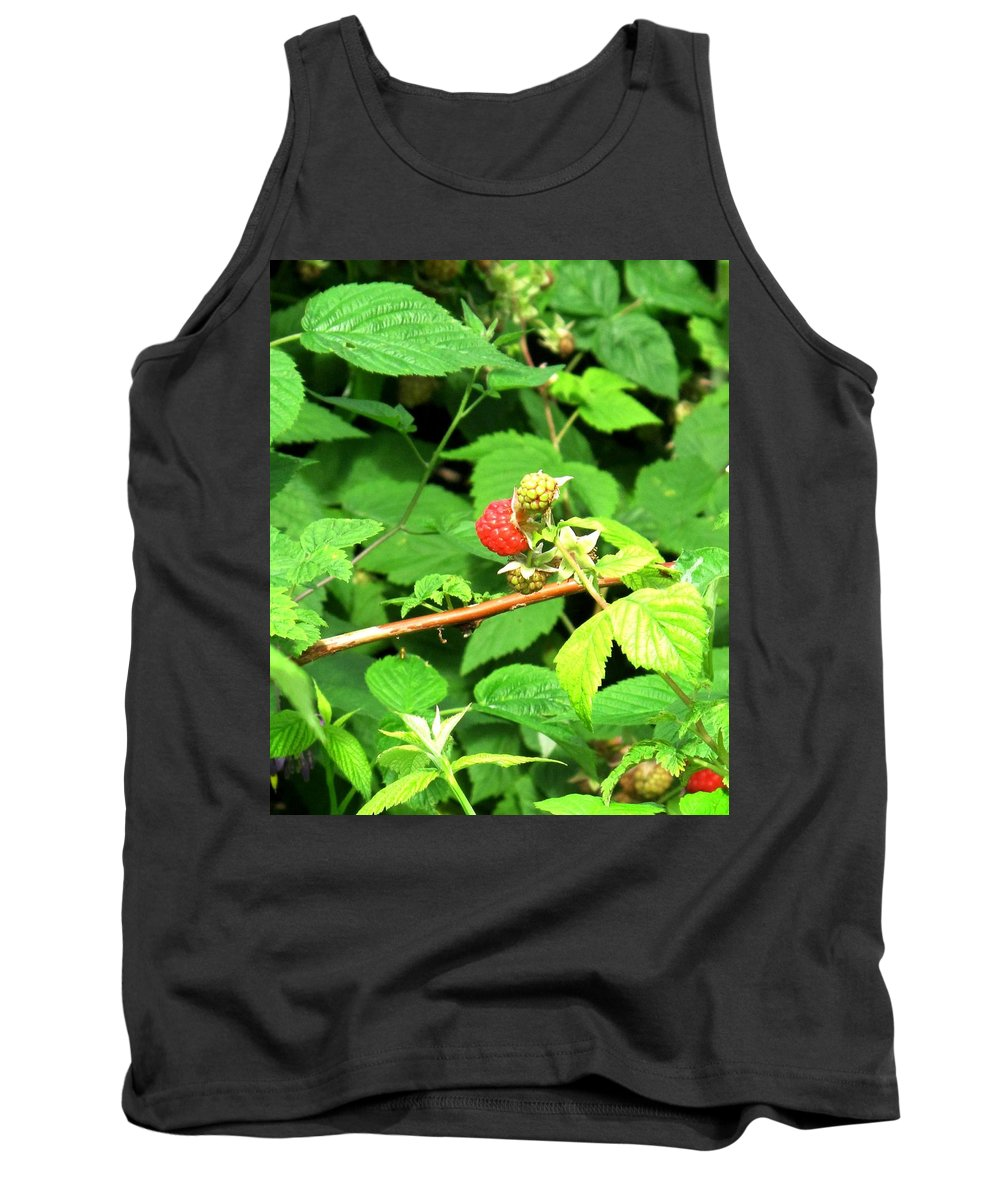 Rasberry Tank Top featuring the photograph The Rasberry Patch by Ian MacDonald