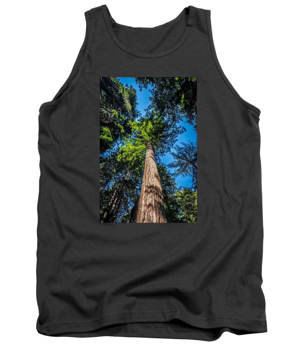 Tree Tank Top featuring the photograph the Redwoods of Muir Woods by Jack Yang