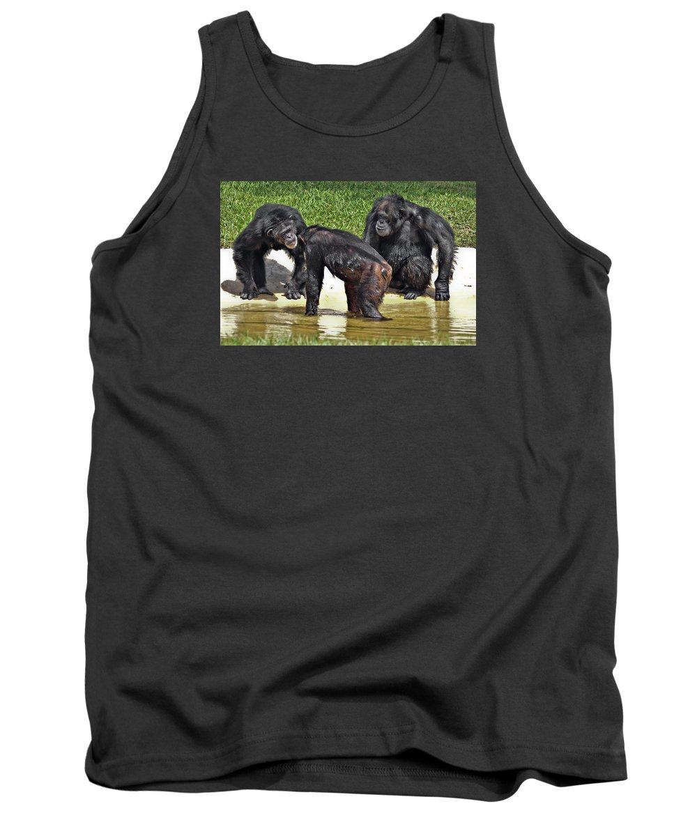 Animals Monkeys Fauna Tank Top featuring the photograph The Secret by LOsorio Photography