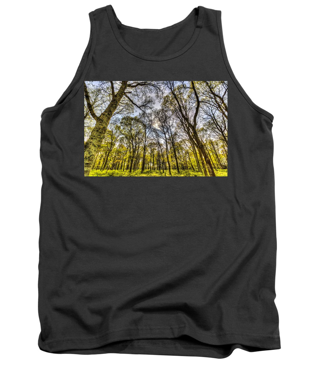 Forest Tank Top featuring the photograph The Silent Forest by David Pyatt