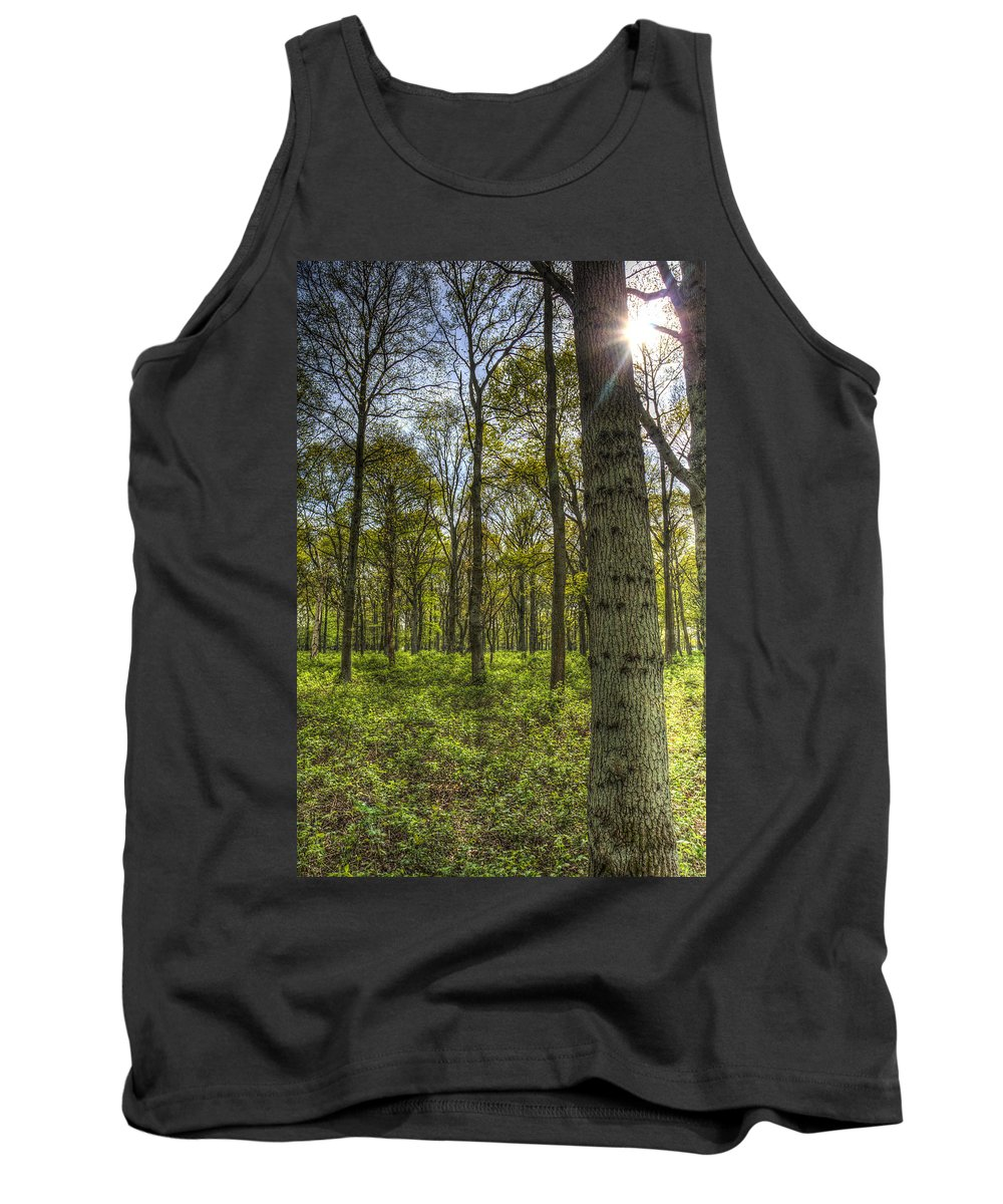 Forest Tank Top featuring the photograph The Sun Touched Forest by David Pyatt