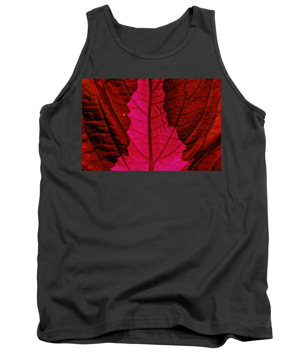 Plant Tank Top featuring the photograph There Will Be Blood by Donna Blackhall