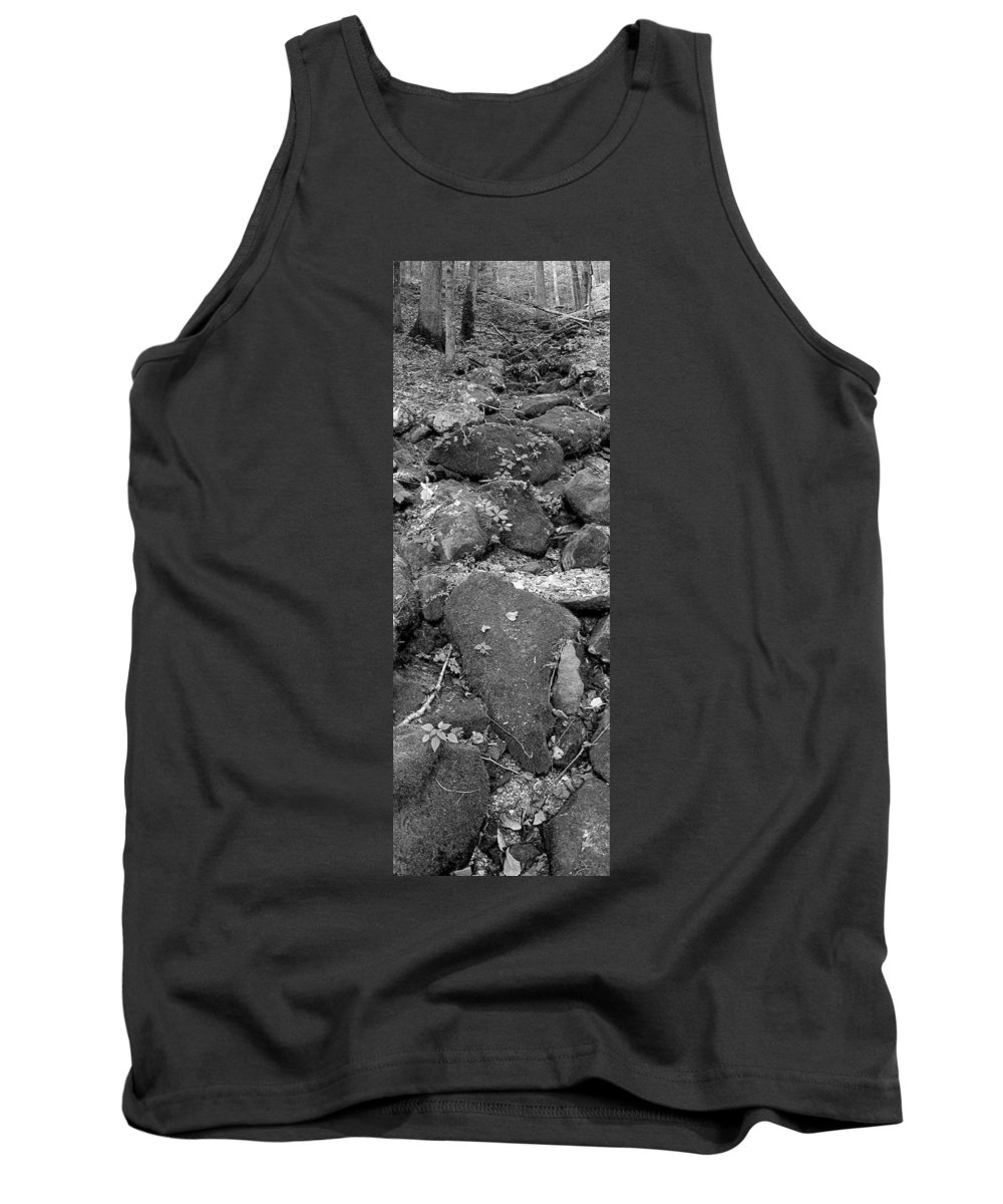 Trees Tank Top featuring the photograph Thirsty For Water by Ed Smith