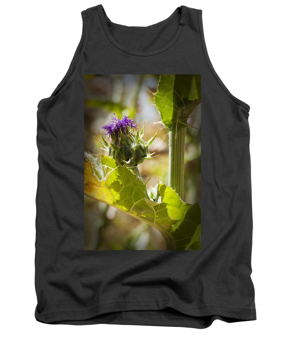 Thistle Tank Top featuring the photograph Thistle 2 by Kelley King