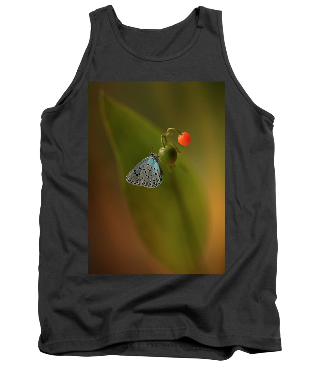 Macro Tank Top featuring the photograph Three Colours by Jaroslaw Blaminsky
