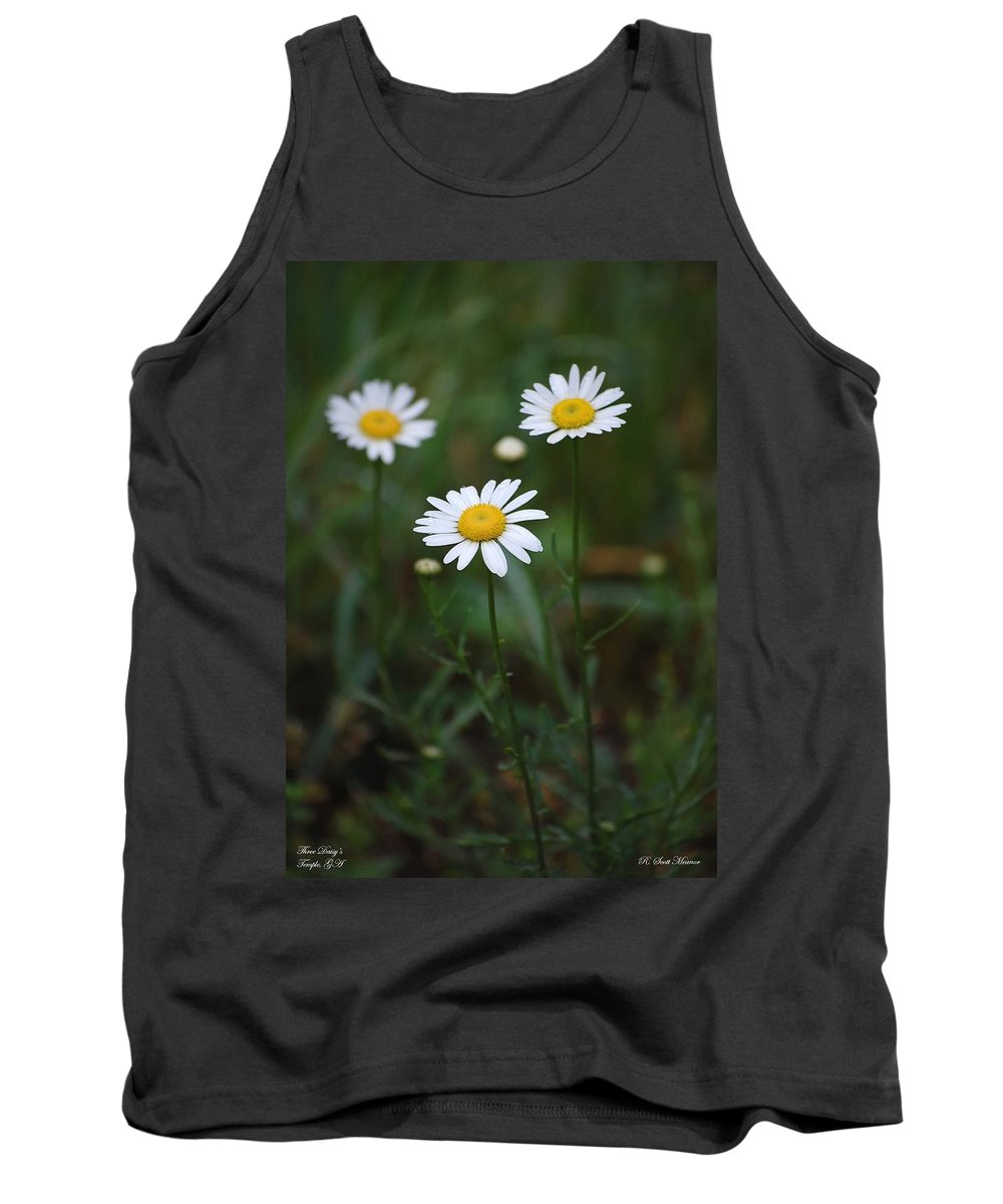 Flowers Tank Top featuring the photograph Three Daisy's by Robert Meanor