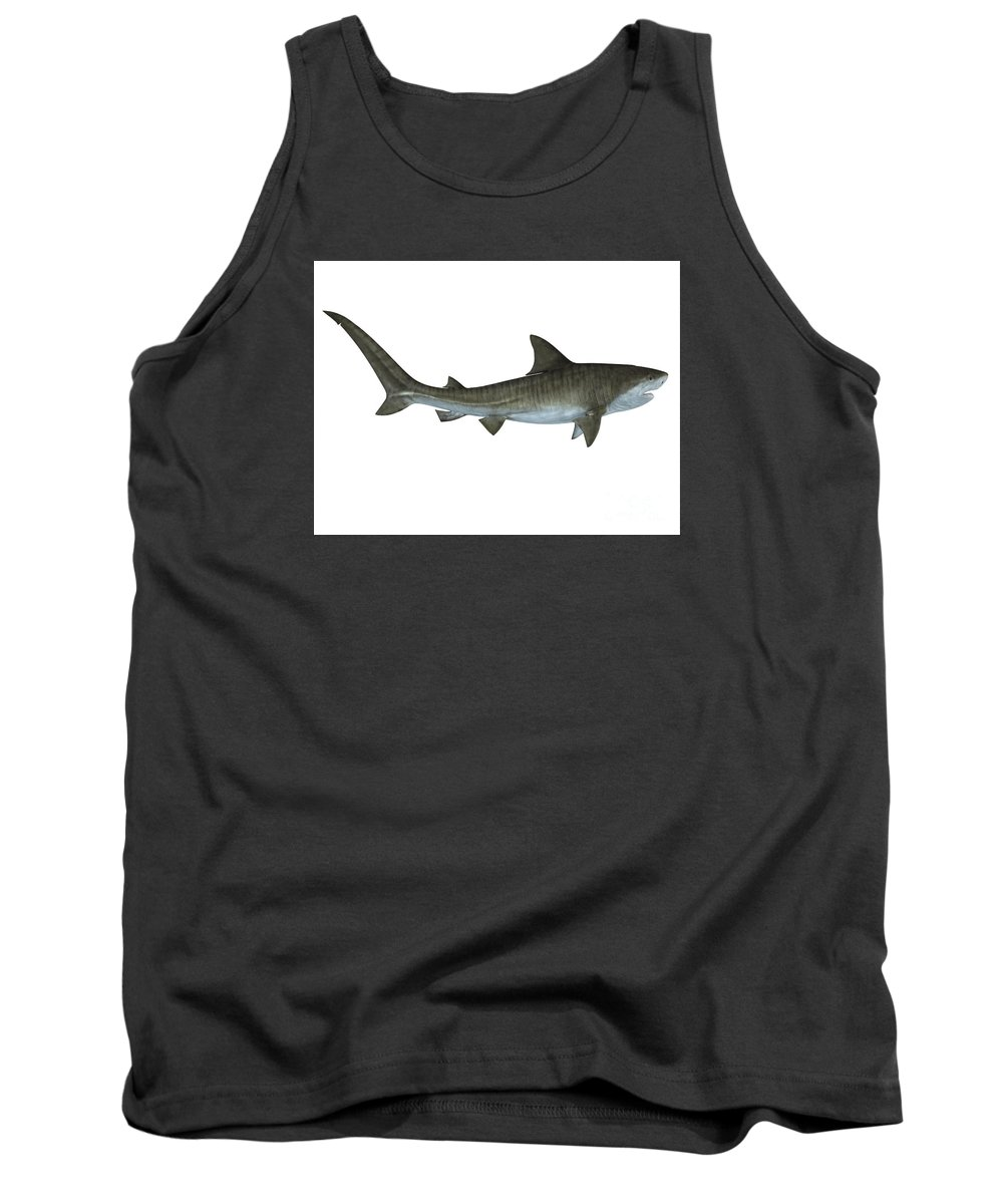 Tiger Shark Tank Top featuring the painting Tiger Shark Side View by Corey Ford