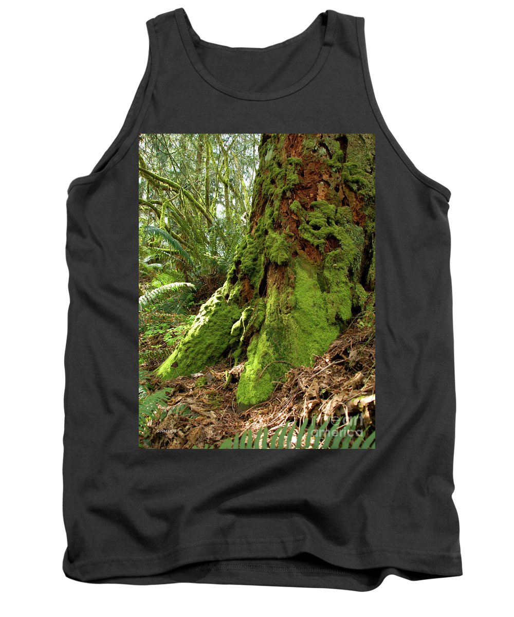 Moss Tank Top featuring the photograph Time Lost by Shari Nees