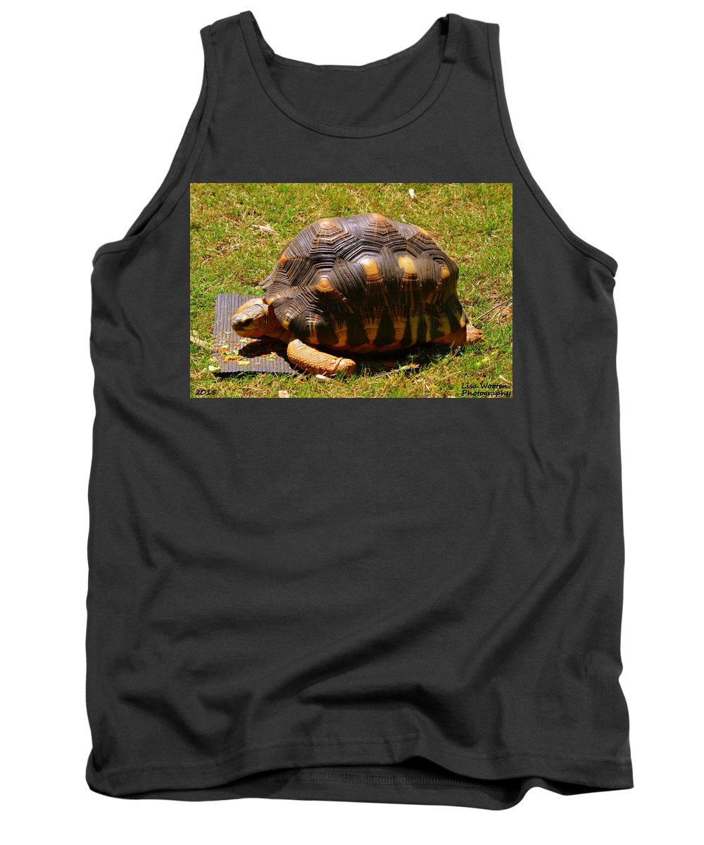 Tortoises Tank Top featuring the photograph Tortoise by Lisa Wooten