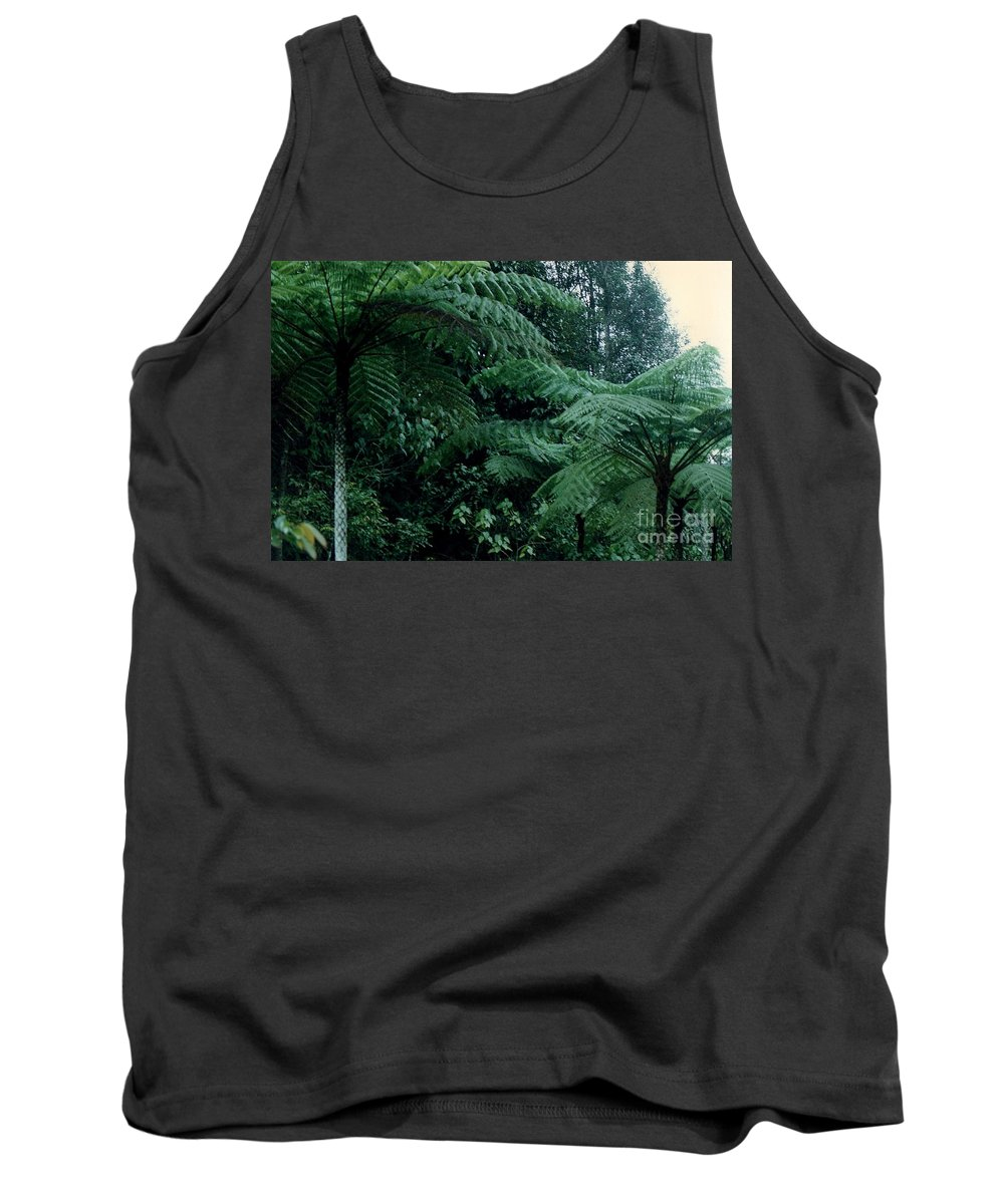 Plants Tank Top featuring the photograph Tree Ferns by Jane Gatward