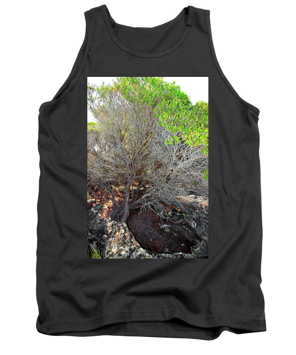 Tree Tank Top featuring the photograph Tree Rock And Life by Miroslava Jurcik